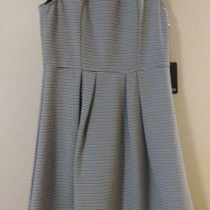 41Hawthorn Black and White Striped Dress